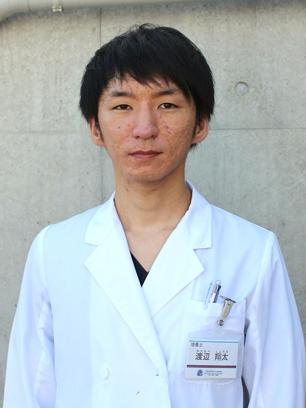 渡辺 翔太